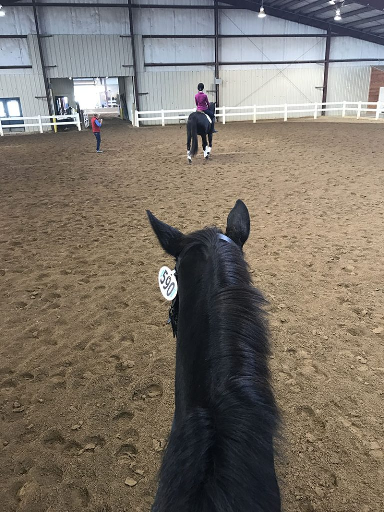Lisa Reid teaching students in an indoor arena